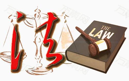 有限责任公司诉讼主体种类辩析
