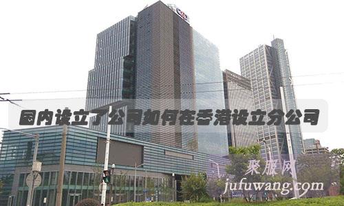 国内设立了公司如何在香港设立分公司?